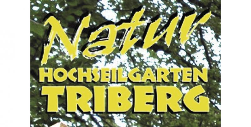 Forest Fun Hochseilgarten