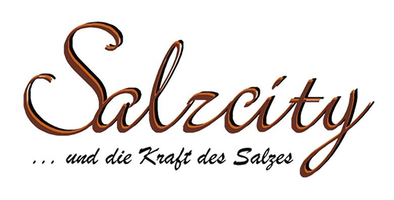 Salzcity