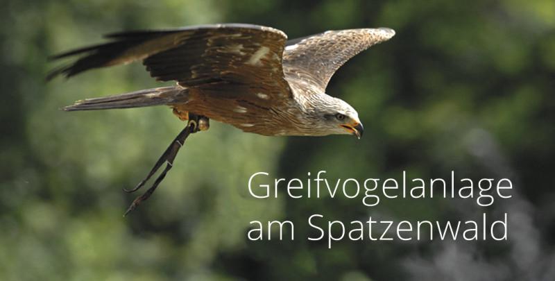 Greifvogelanlage am Spatzenwald
